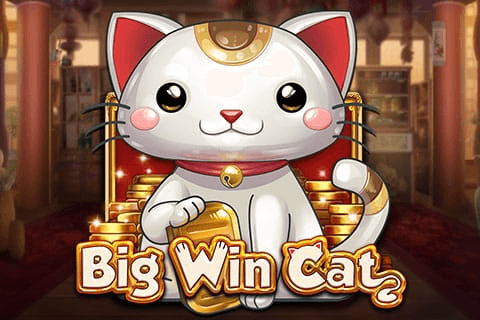 logo big win cat playn go