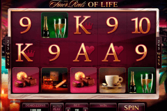 the finer reels of life microgaming tragamonedas gratis