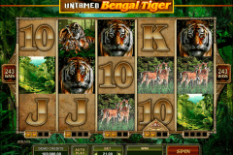 untamed bengal tiger microgaming tragamonedas gratis