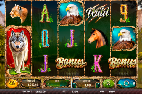wild animals red rake tragamonedas gratis