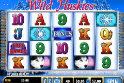 wild huskies bally tragamonedas gratis